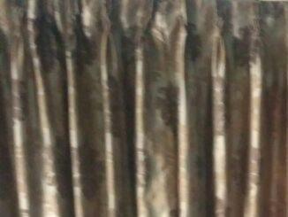 ಮಾಜಿ ಸಂಸದ, ನಟ ಶಶಿಕುಮಾರ್ ಕಾಂಗ್ರೆಸ್ ತೊರೆದು ಜೆಡಿಎಸ್ ಸೇರ್ಪಡೆ