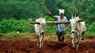ಕೃಷಿ ಕಾಯ್ದೆಗಳಿಗೆ 850ಕ್ಕೂ  ಹೆಚ್ಚು ಬೋಧಕರ ಬೆಂಬಲ